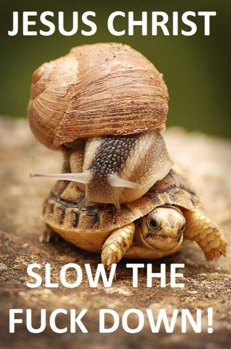 Fast is a relative term!