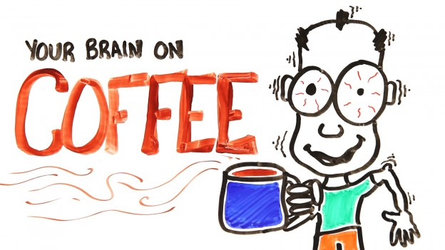 How Coffee Really Works On Your Brain